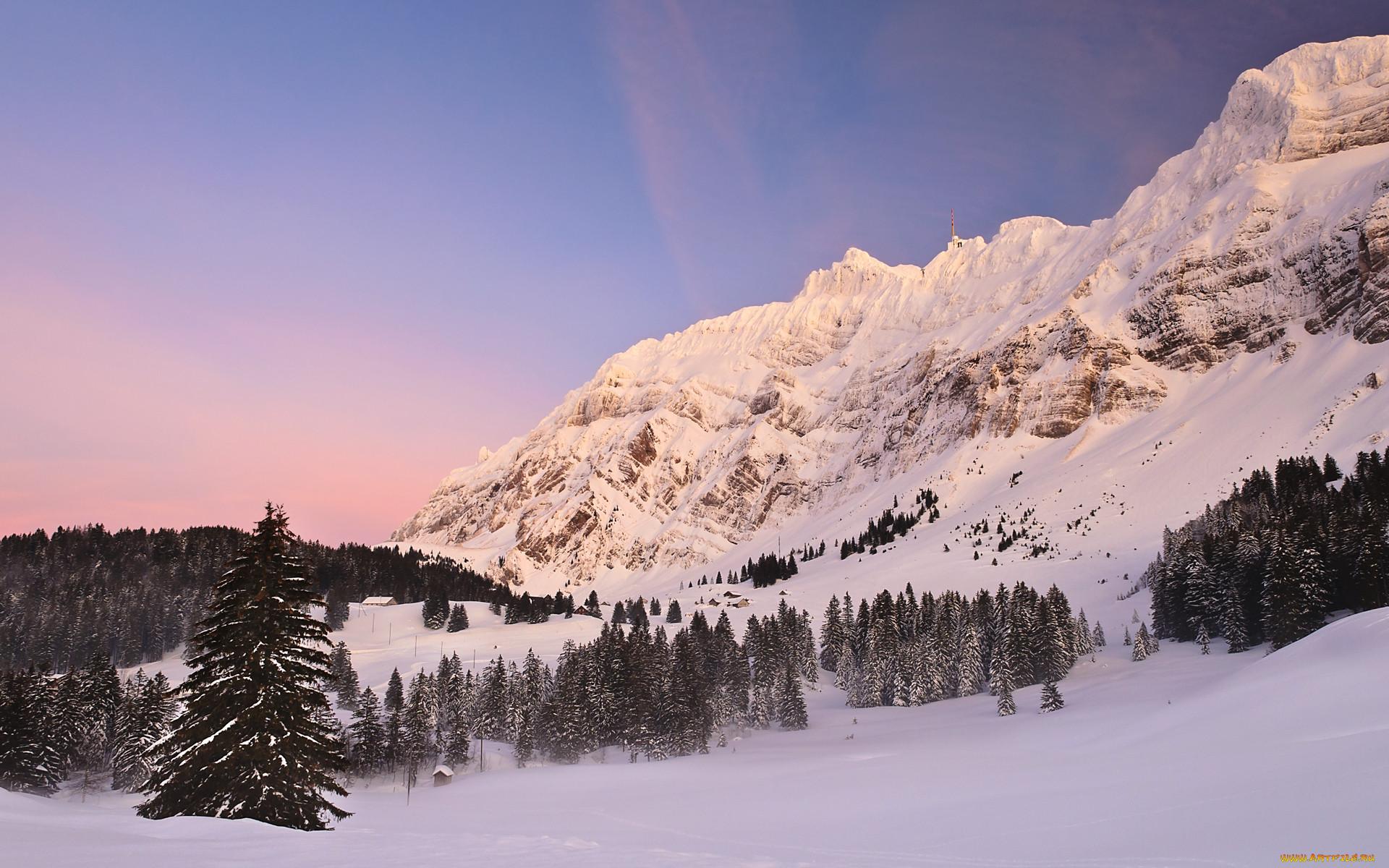 Природа зима обои для рабочего стола